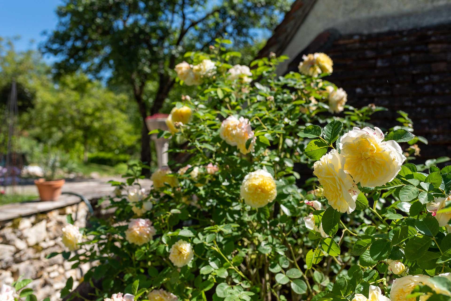 chambre d hotes vallee de la dordogne lotoise